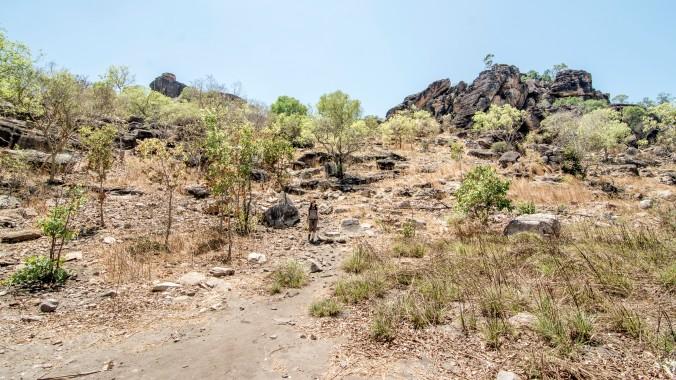 arnhem land - injalak hill (38).jpg