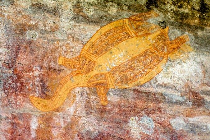 kakadu - ubirr (2) - longneck turtle.jpg